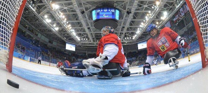 Čeští sledge hokejisté se chystají na paralympijské hry