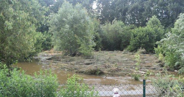 Počasí v ČR: Konec srpna přinese deště