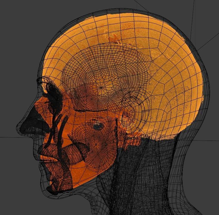 Vědci zrekonstruovali tvář svaté Ludmily.