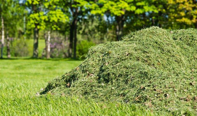 Letecké palivo se možná brzy bude vyrábět z trávy - ilustrační foto