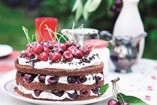 Ani třešnička nazmar! Je libo kompot, marmeládu, dort nebo bublaninu?