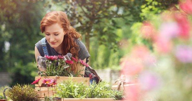 Výroba podzimní dekorace nezabere mnoho času, navíc si u ní odpočinete.