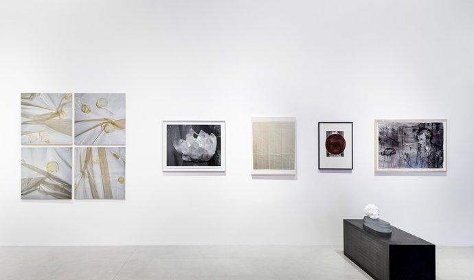 Investování do umění může být způsob, jak diverzifikovat portfolio.