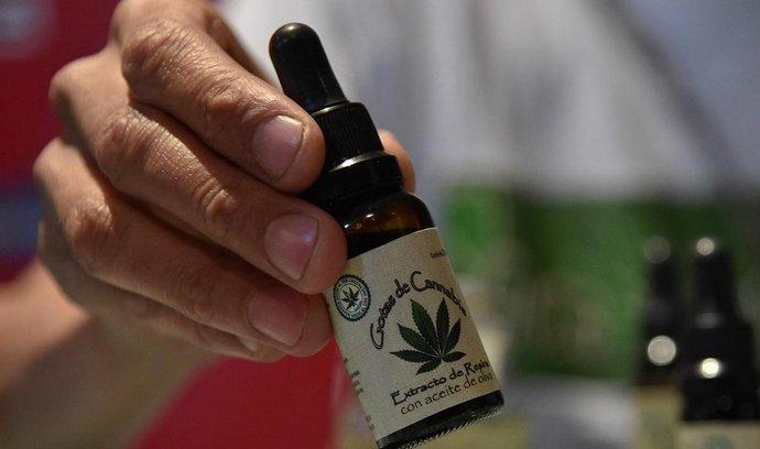 V Mexiku se přes zákazy léčí macerovanou marihuanou