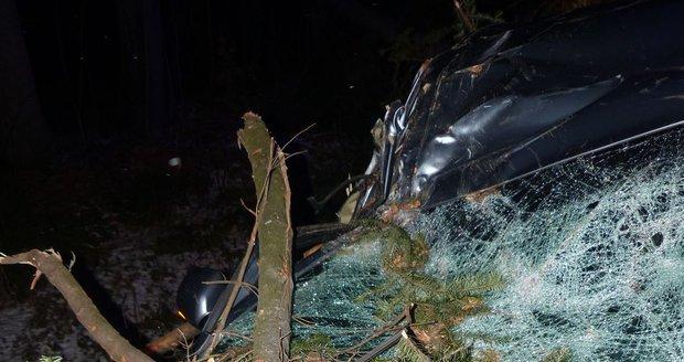 Silný vítr lámal stromy v noci na 28. prosince 2020 v Olomouckém kraji. V úseku mezi Dolním Údolím a Zlatými Horami spadl smrk na projíždějící automobil.