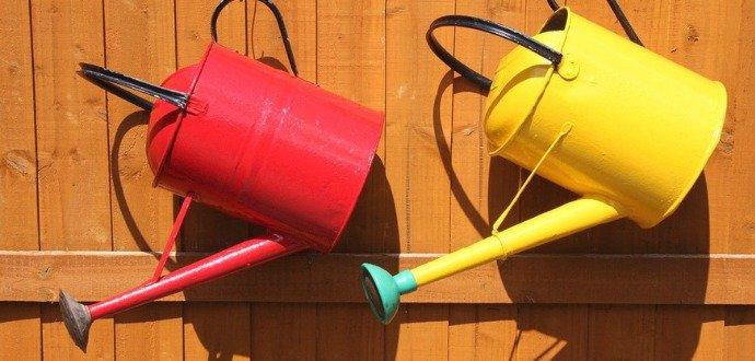 Voda nad zlato: 9 tipů, se kterými zalejete zahradu úsporněji