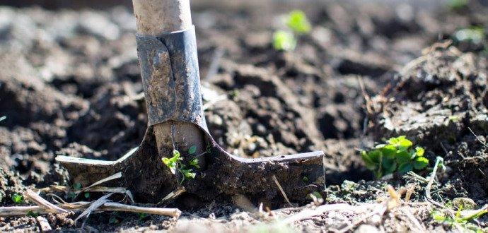 Generální úklid: připravte zahradu na příchod jara