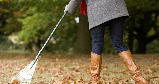 Sběr listí  je jedna z nejenepříjemnějších podzimních činností, ale pro trávník důležitá.