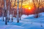 Leden: vysoký krevní tlak, nemoci srdce