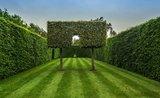 Skroťte svoj živý plot