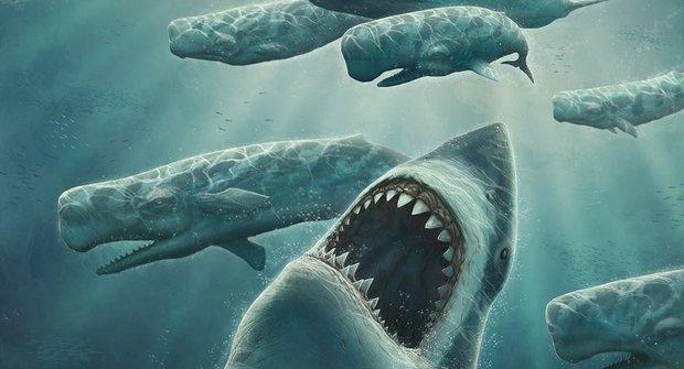 """Souboj mořských příšer: """"Pražralok"""" versus """"pravorvaň"""""""