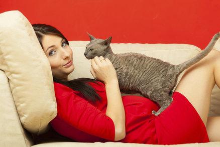 Těhotná žena a kočka: Je potřeba se bát toxoplazmózy?