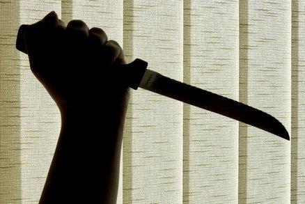 Psychicky nemocný muslim rozdával rány nožem: Ve jménu ramadánu pobodal ženu (19)