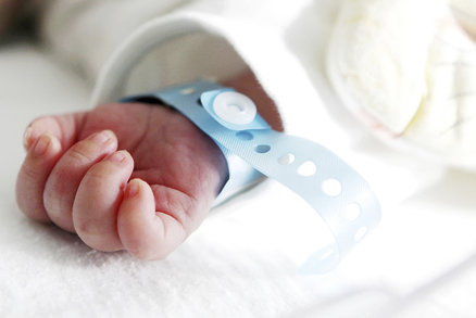 Náhradní mateřství po česku: Až za půl milionu!