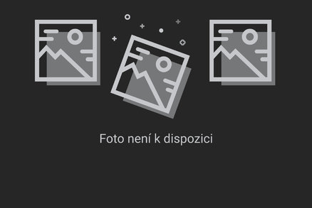 Film o Babišovi zatrhlo i gymnázium v Sokolově. Na promítání kývl ale kostel