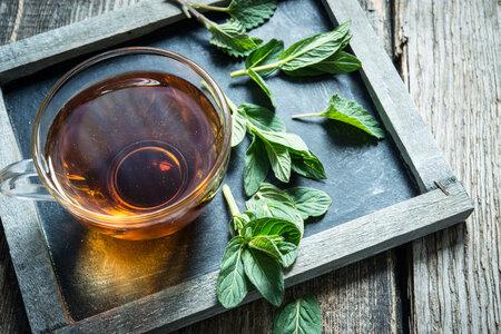 Horečku může pomoct snížit i mátový čaj. Patří mezi chladivé potraviny.