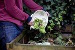 Pozor, ať si nezničíte kompost! Víme, co tam nepatří