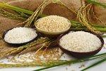 Vyznejte se v rýži: Existuje až 8 000 druhů! Ze které je nej rizoto?
