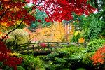 Příroda jako z pohádky: Na těchto místech je podzim nejkrásnější
