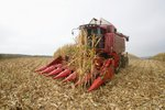 Zemědělci se zasekla noha v kombajnu. Amputoval si ji na poli kapesním nožíkem