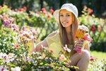 Červen na zahradě: Podložte jahody, ošetřete růže a zkontrolujte ovocné stromy