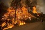 Ohnivé peklo v Kalifornii: Tisíce evakuovaných lidí a stovky zničených domů