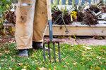 Zahrada v prosinci: Zalijte stromky, zryjte záhony a uložte nářadí