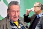 Opilý politik zelených měl prý tři piva. Pod parou už byl i Kalousek a Hamáček