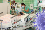 Prasečí chřipka zabíjela: V Chomutově zemřela žena po selhání organismu
