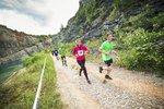 »Běžte do háje«. Přihlašujte se na charitativní běh lesem v botách i naboso