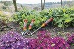 Květinová radost na zahradě