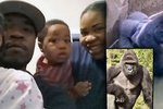 Rodiče chlapce, kvůli kterému zastřelili gorilu: Vyhrožují jim smrtí