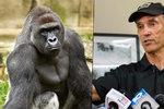 Zastřelený gorilák Harambe bude mít mláďata: Jeho odkaz bude žít nadále