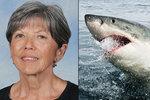 Žralok zabil dalšího člověka. U pobřeží Austrálie zaútočil na potápěčku