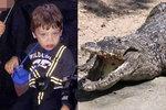 Aligátor odtáhl a utopil chlapce (†2): Za 45 let se nic takového nestalo!