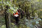 V Kotěrově skončila paraglidistka na stromě, výšková technika byla k ničemu!