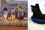 Sněžný park uprostřed pouště: V Rijádu můžete bobovat, i když je venku 45 stupňů