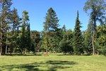 Stromovka slaví 750 let existence. V parku proběhnou komentované prohlídky