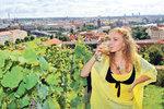 Na Hradě se bude konat vinobraní. Produkční zahrady zůstanou nakonec zavřené