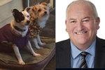 Ministr si nechal vozit psy na venkov za veřejné peníze. Opozice volá po demisi