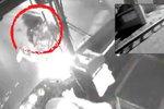 Šílené video: Autobus srazil mladou dívku (17), děsivou nehodu zachytila kamera