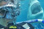 Egypt, Kanáry, Španělsko: Žraloci útočí i v dovolenkových rájích Čechů