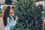 Vánoční stromeček: Je lepší umělý, živý, nebo v květináči? Poradíme vám, jaký si vybrat