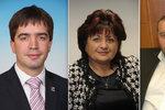 Vdova po kmotrovi, trestaný Novák, starosta Chebu: Koho stíhají kvůli dotacím?