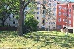 Čím zkrášlit své okolí? Praha 9 chce zrevitalizovat panelová sídliště, občané mohou pomoci