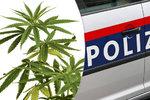 Rakušané rozprášili gang překupníků drog! Omamnou látku dováželi z Česka