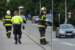 Po Jiráskově mostě si to vykračovala labuť: Ohrožovala auta, zasahovali hasiči