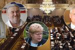 """Ringo Čech, Volfová a Šťovíček. Do Sněmovny chtějí po pauze """"staří harcovníci"""""""
