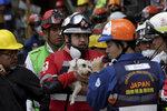 Psí zázrak: Záchranáři vytáhli po 6 dnech ze sutin živého psa. Zasypalo ho zemětřesení