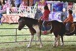 V Šeberově bude veselo: S poníky nebo dětským vláčkem tu s předstihem oslaví Den dětí